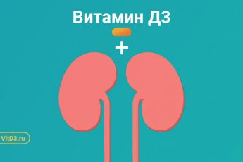 Витамин Д3 и почки